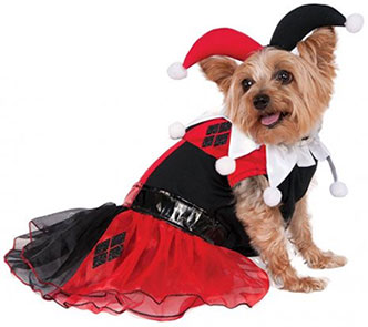 Harley Quinn Dog Costume