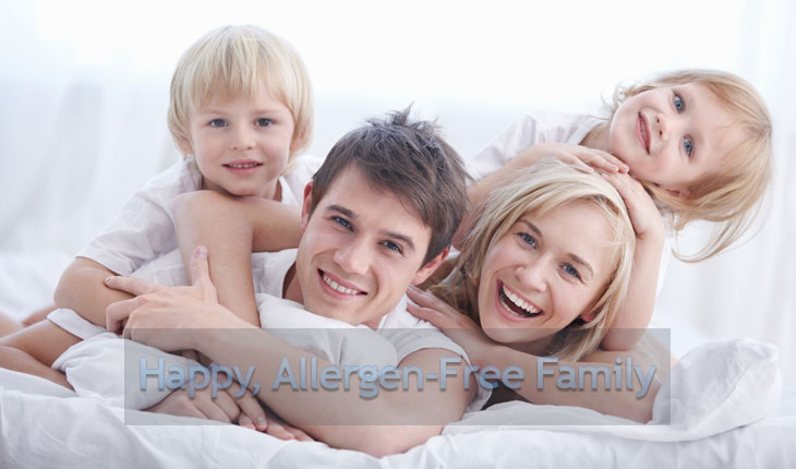 Which Air Purifier is Best for Allergies? 1